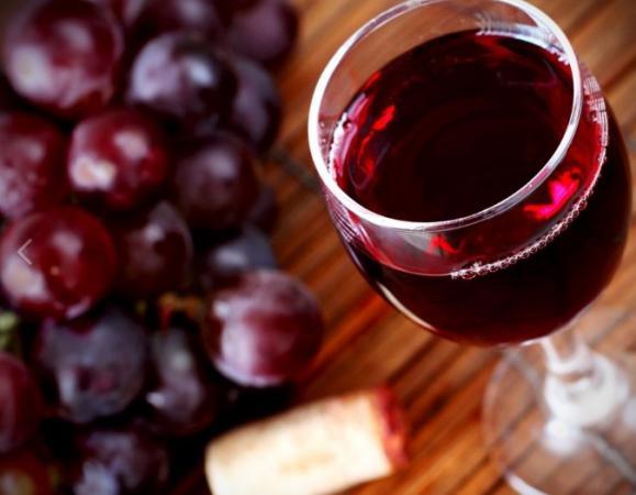 Винный виноград саперави северный красный купить по цене 22 руб. в Краснодаре на PromPortal.Su (ID#21835203)